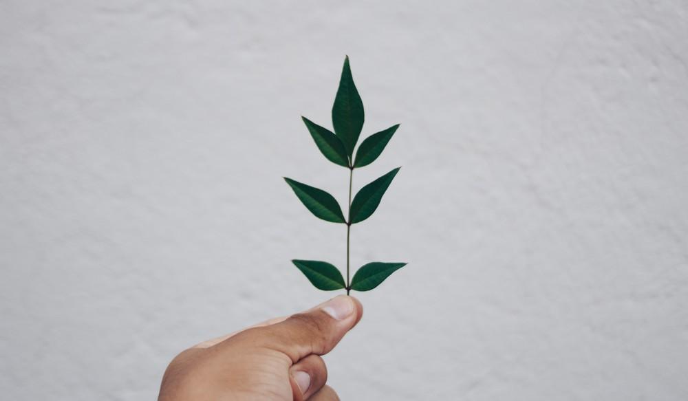 Ekologiczna galwanizacja przy użyciu Chrom 3+